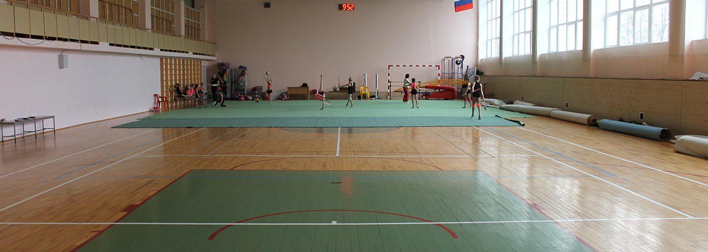 игровой-спортивный-зал-№1